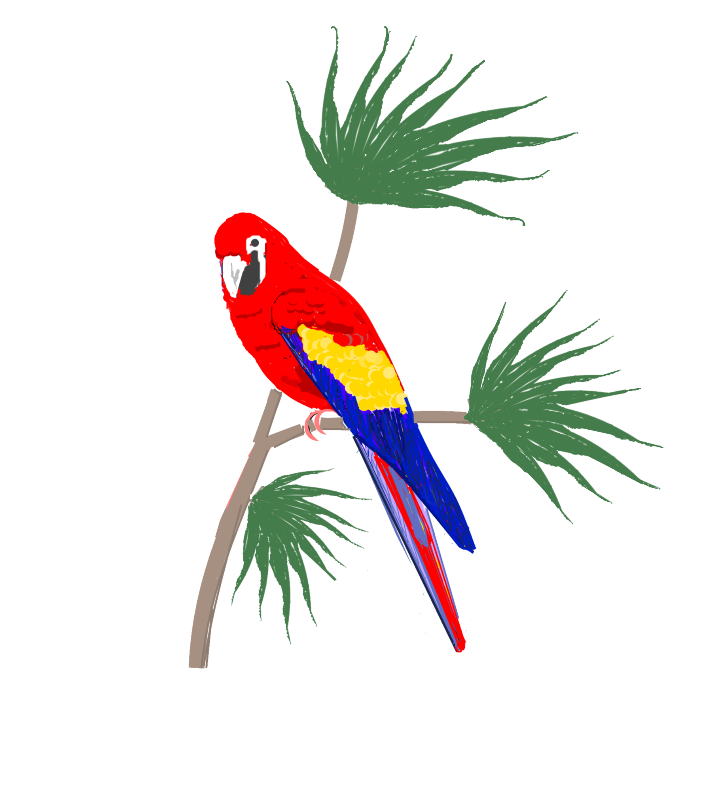 Parrot On Tropical Plants