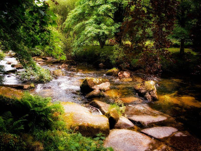 West Dart River Dartmoor