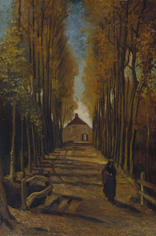 Avenue of poplars autumn