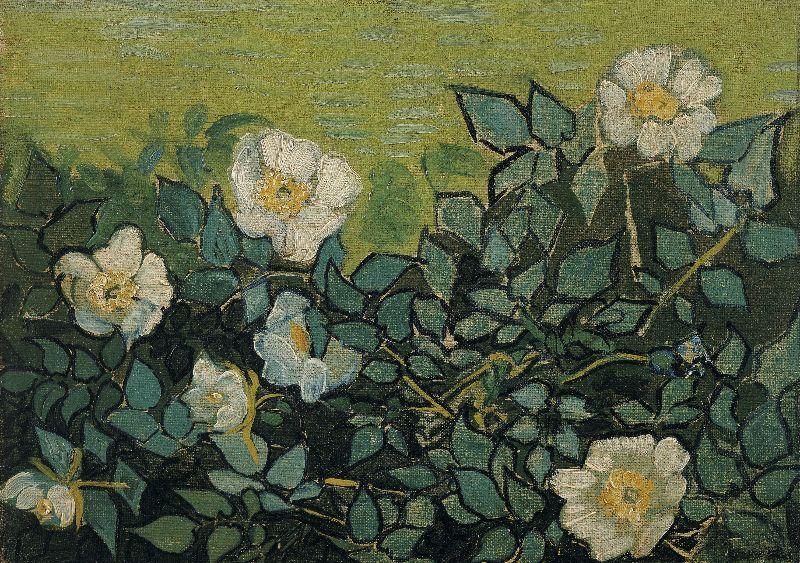 Wild roses Van Gogh