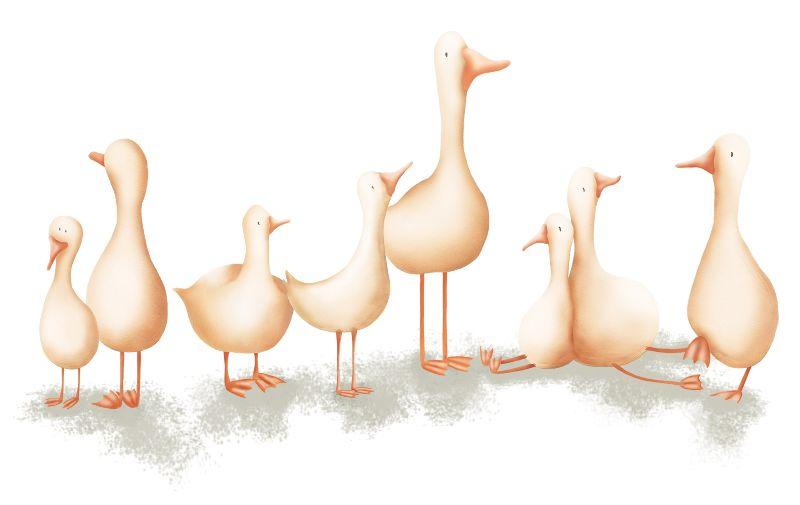 GeeseBirds