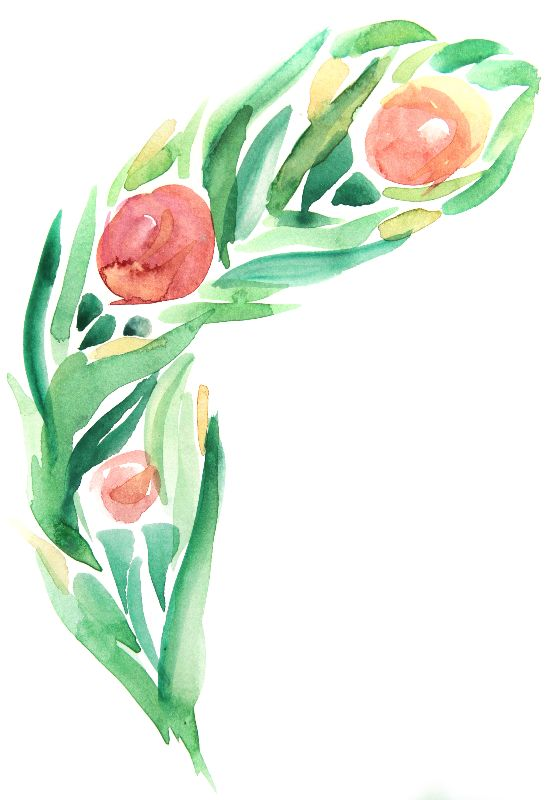 Pink Flora Watercolour