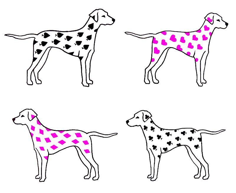 Dalmatian Dog PrintPink