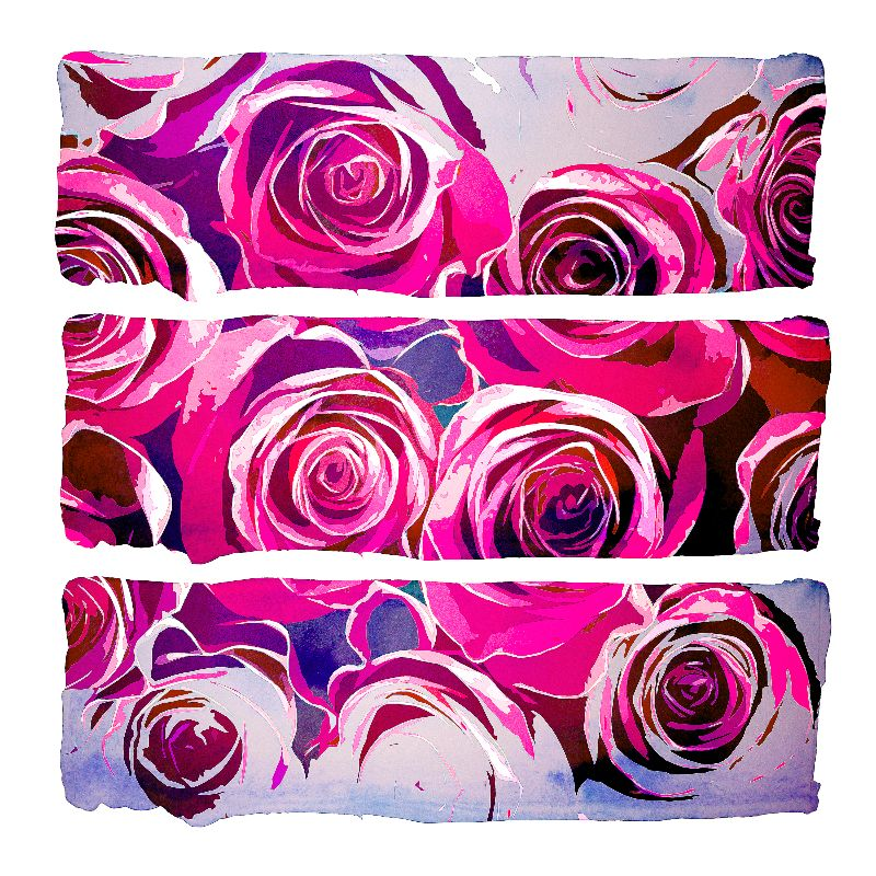 Roses in Pink and Purple
