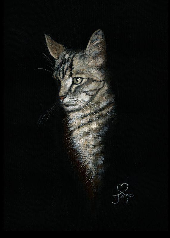 Kingdom of a cat