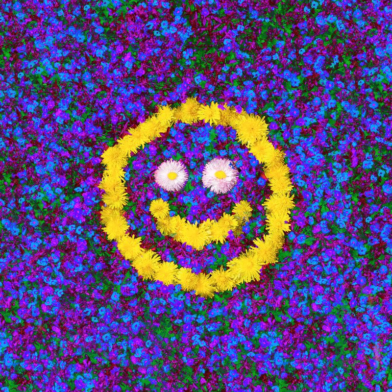 Happy smiley fun flowers