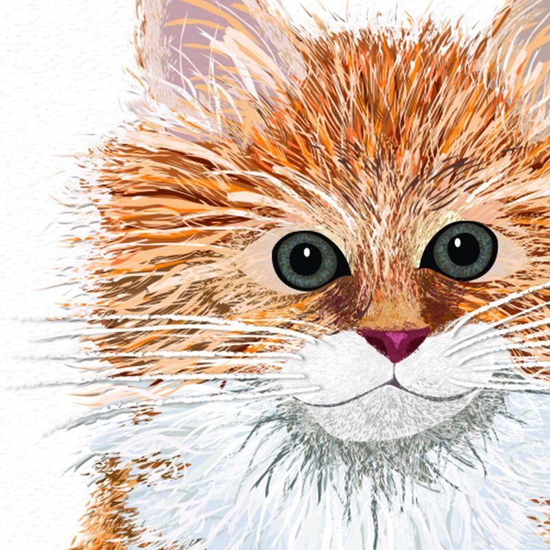 Ginger Kitten Detail