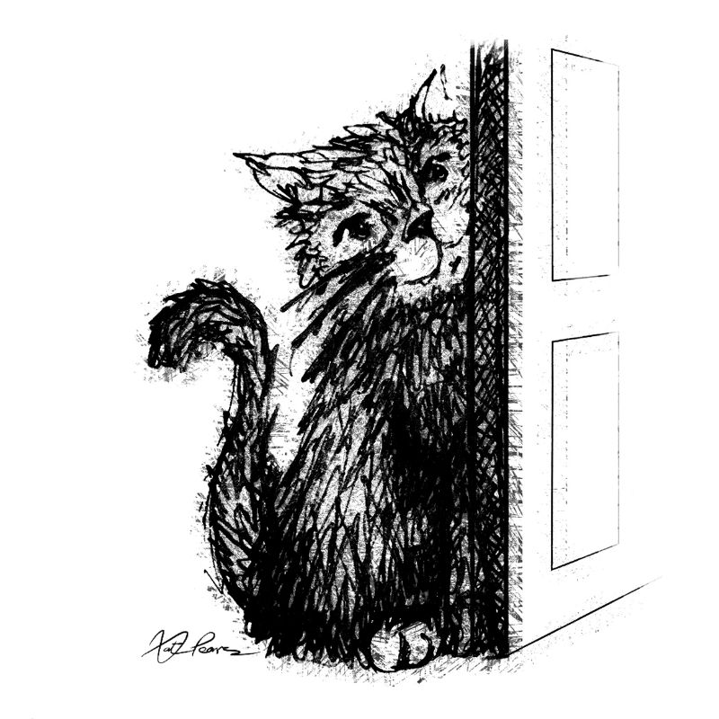 Ink Cat  Door