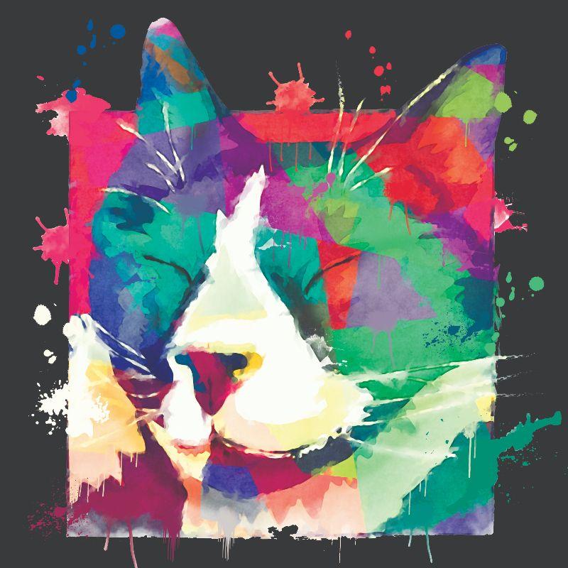 Rainbow Tuxedo Sleepy Cat