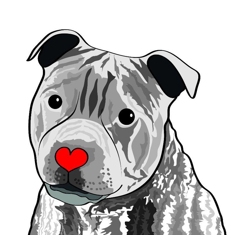 StaffordshireBull Terrier