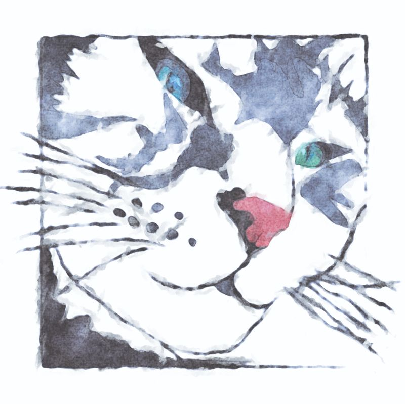Watercolour Cat 1