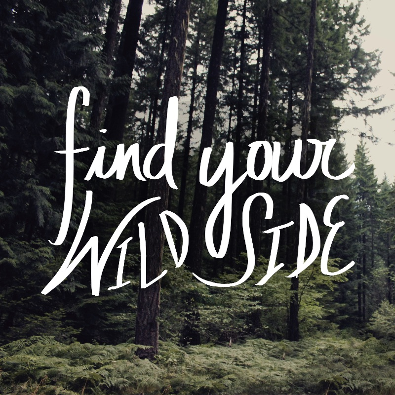 Find Your Wild Side