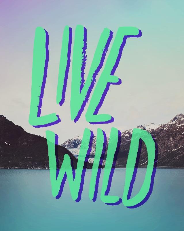 Live Wild  Alaska