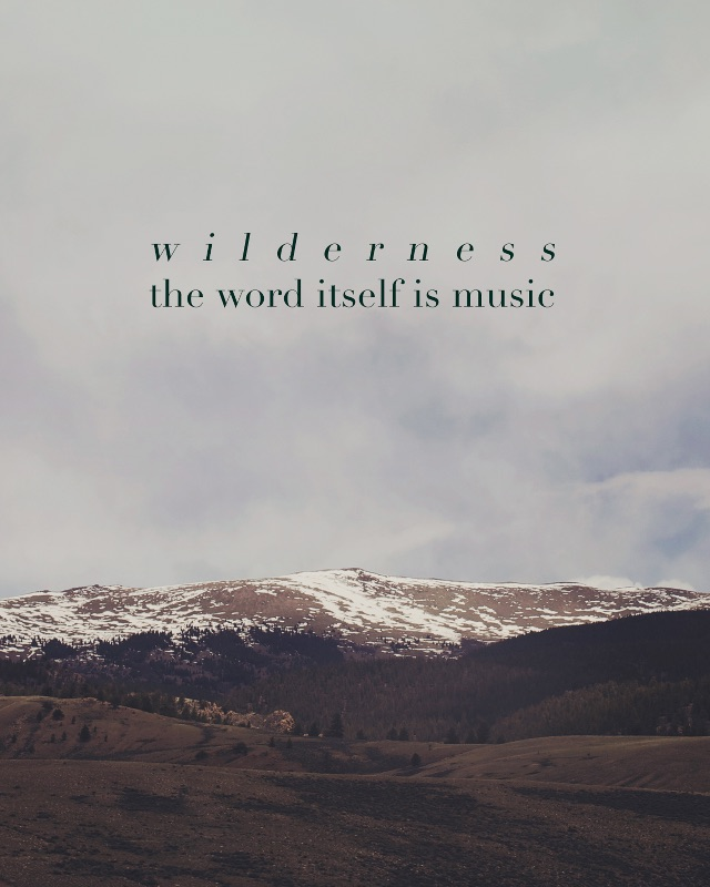 Wilderness Music