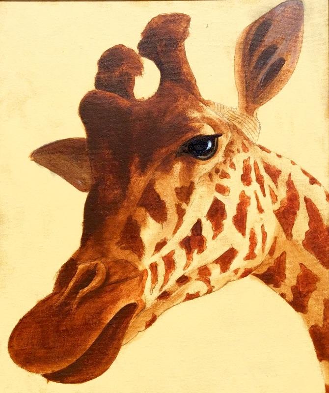 Lofty giraffe