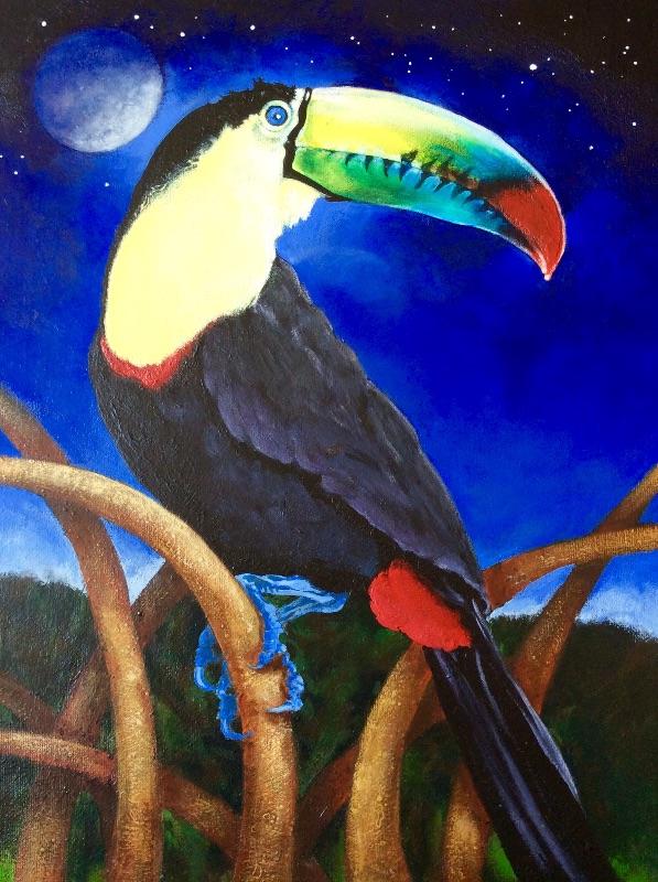 Moonlight toucan