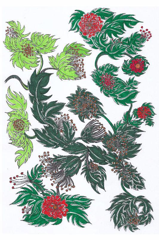 La Gomera Fabulous Blooms
