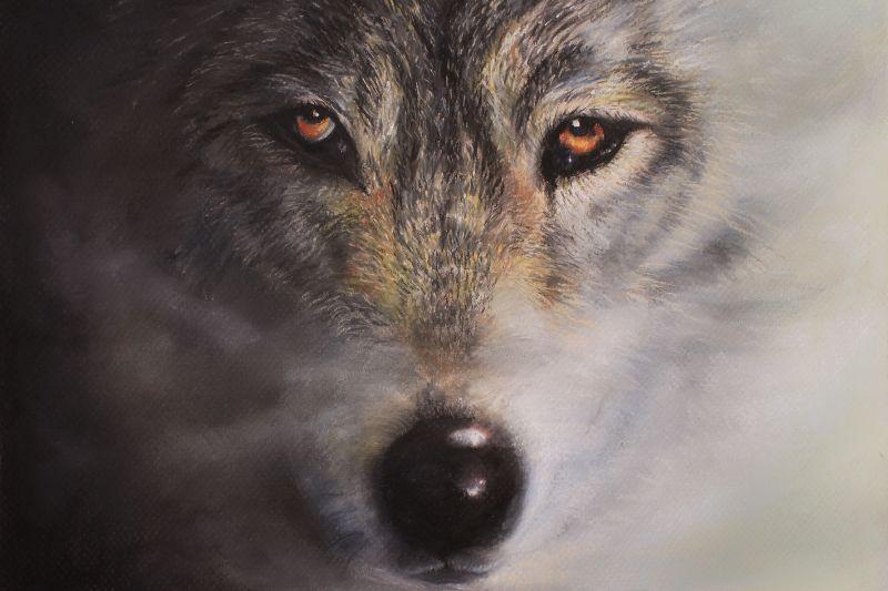 Wolfrik