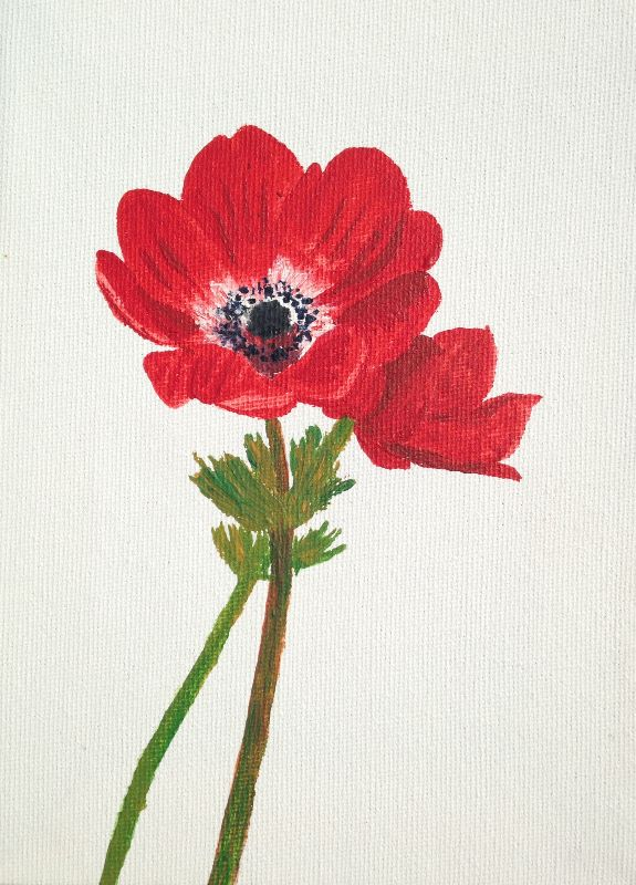 Hand painted red poppies