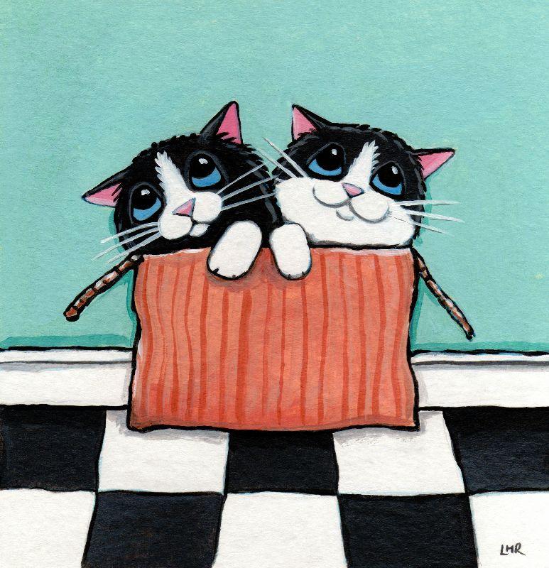 Box of Tuxedo Kittens