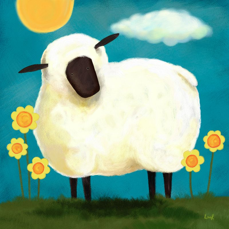 Fluffy White Sheep