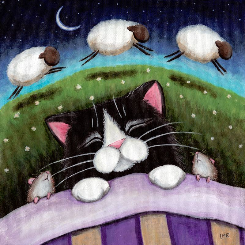 Sheep Dreams Sleeping Cat