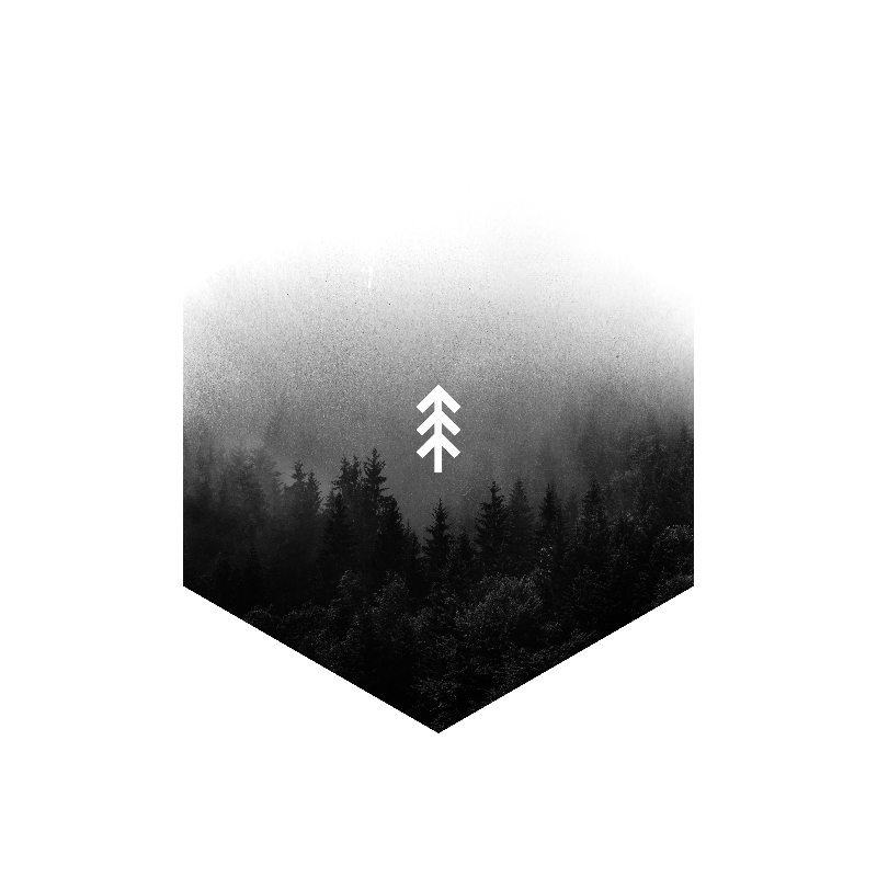 Forest fade