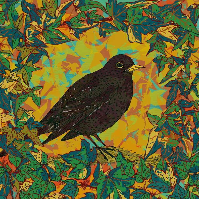 Blackbird and Ivy
