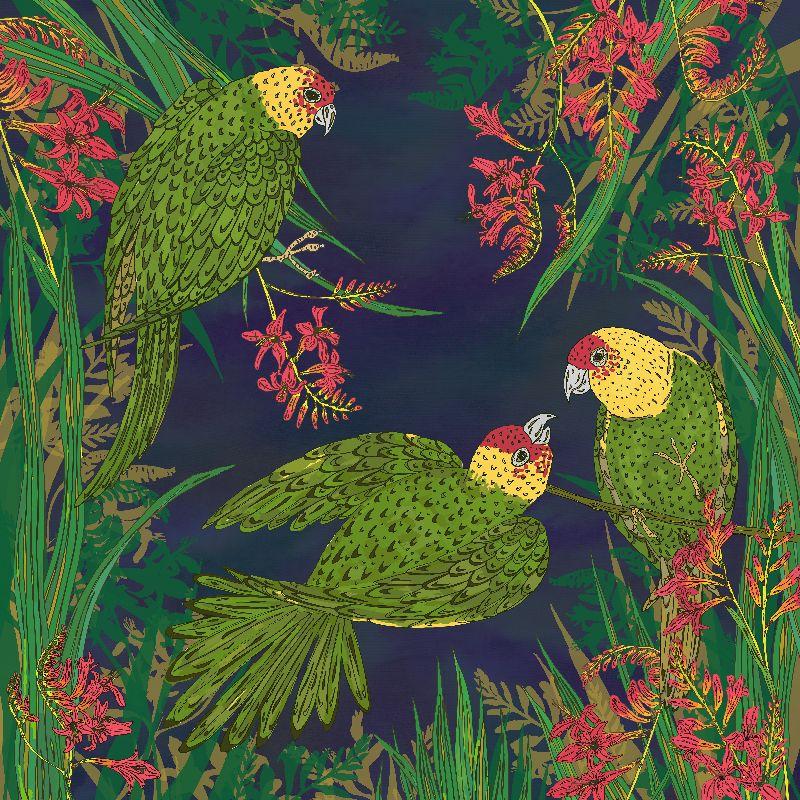 Parakeet Paradise
