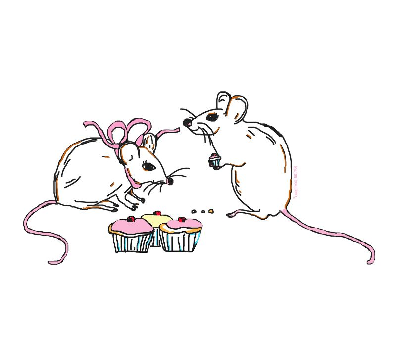 Mice and Cupcakes