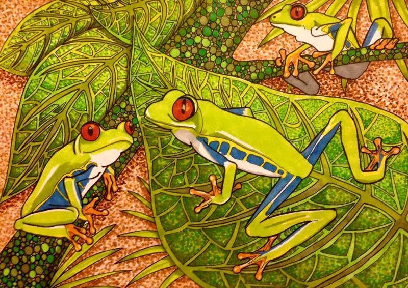 Tree Frog family
