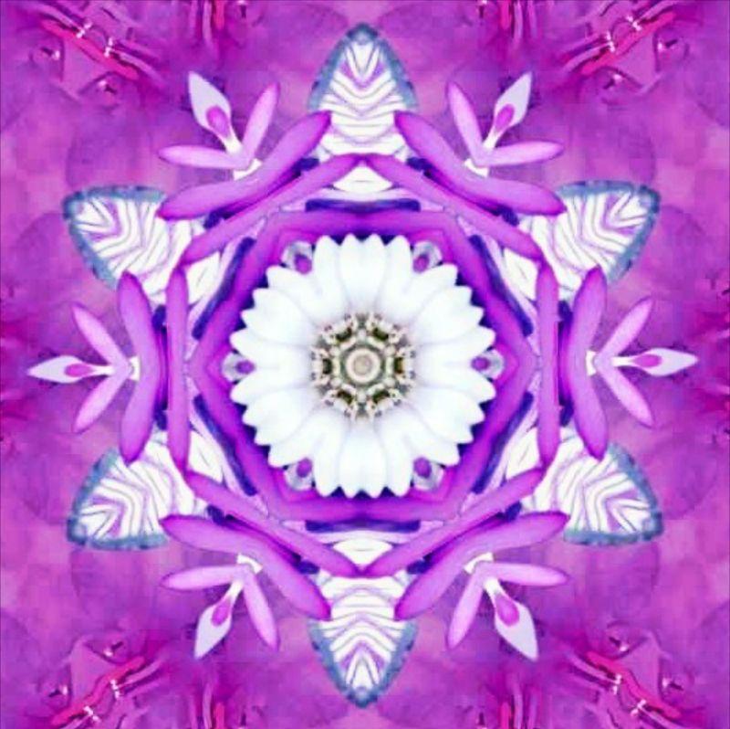 Floral Purplite