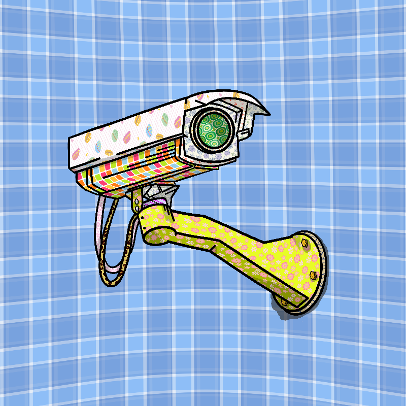 Patterned Security Camera