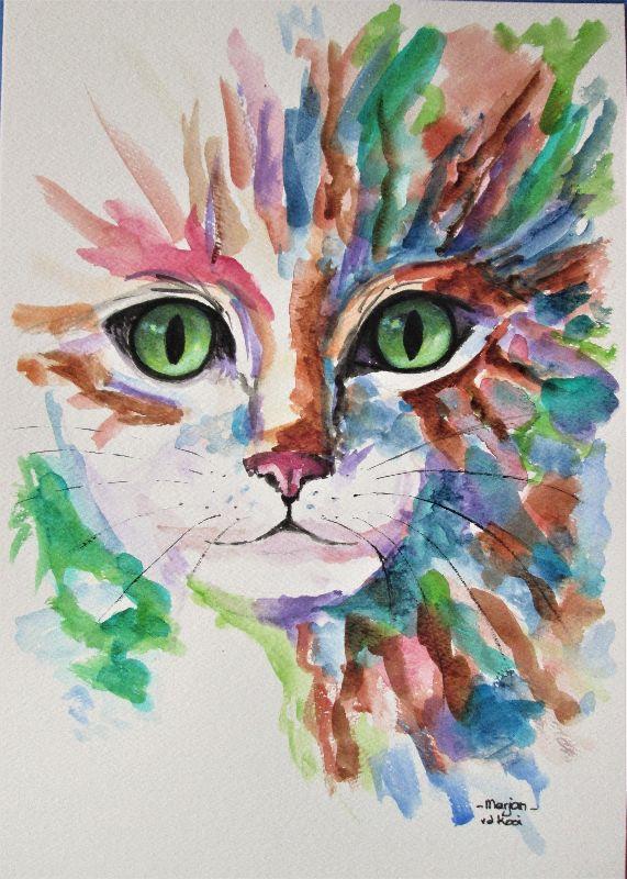 Cat Eyes