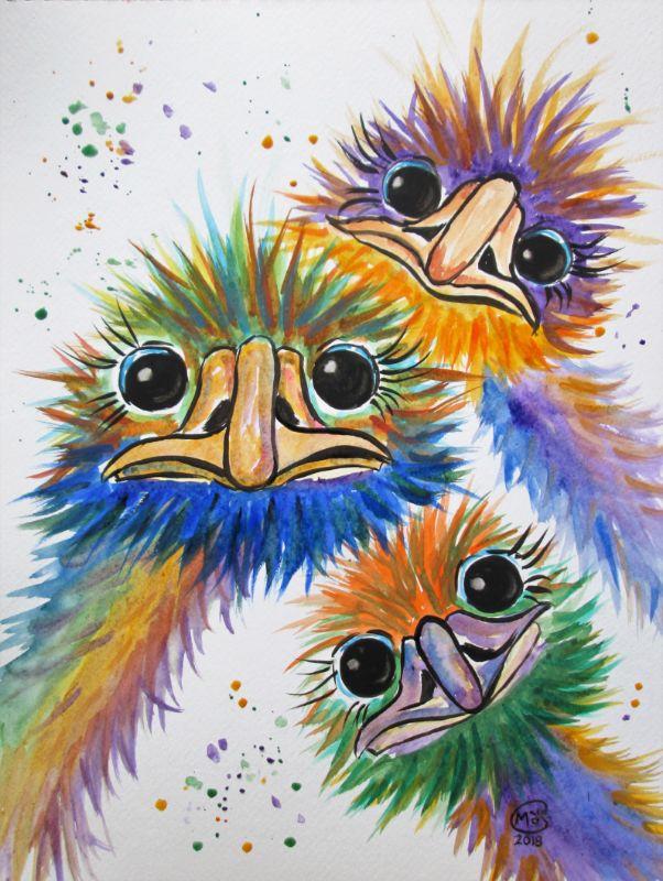Emu Trio Ostrich Bird