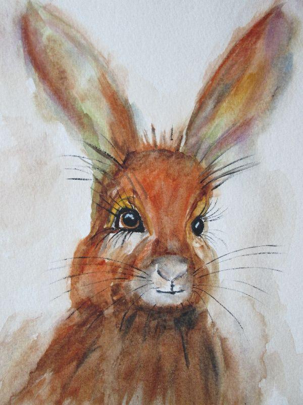 Happy Hare