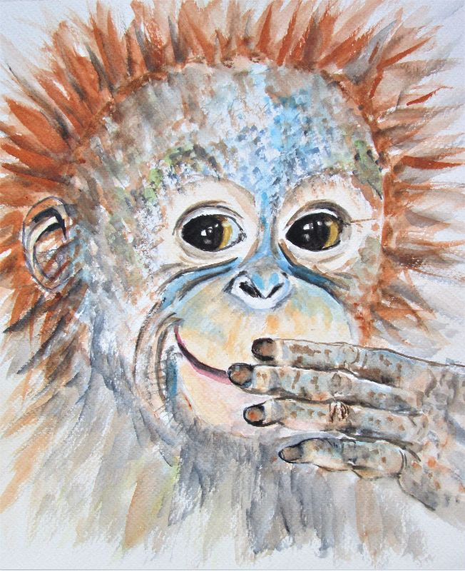 Orangutan Monkey Smile