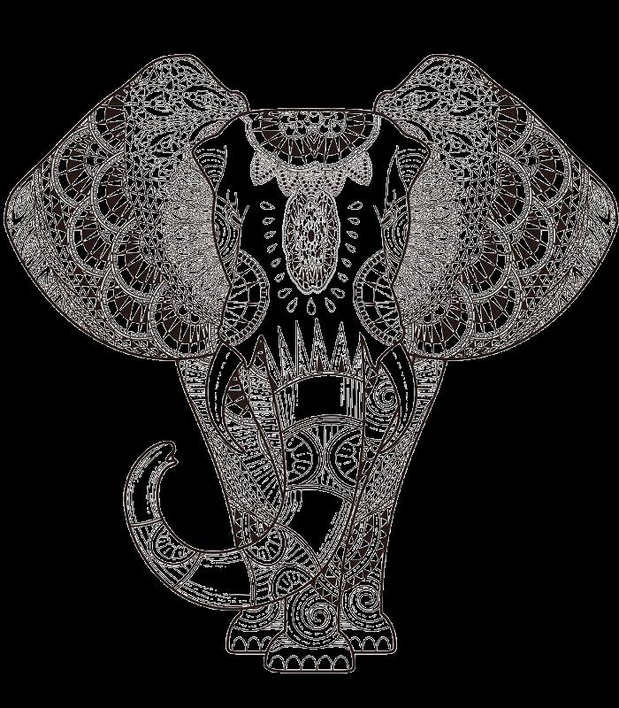 Black  White Elephant
