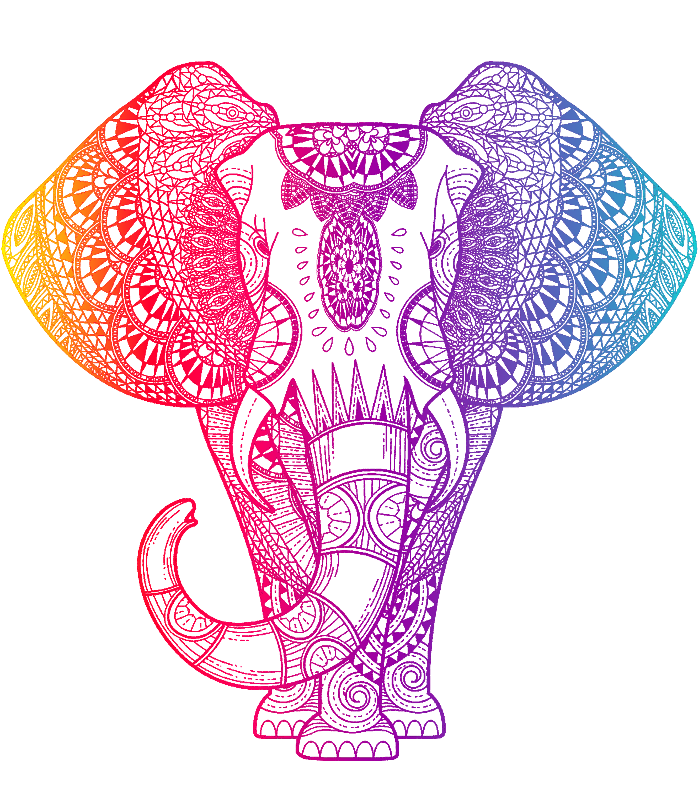 Colorful Rainboe Elephant