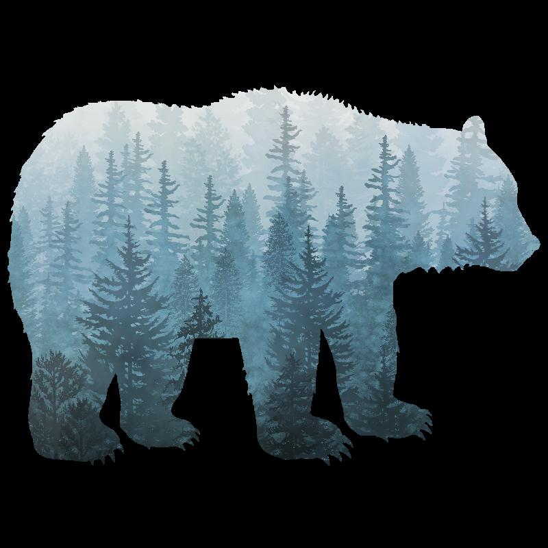 Misty Forest Bear