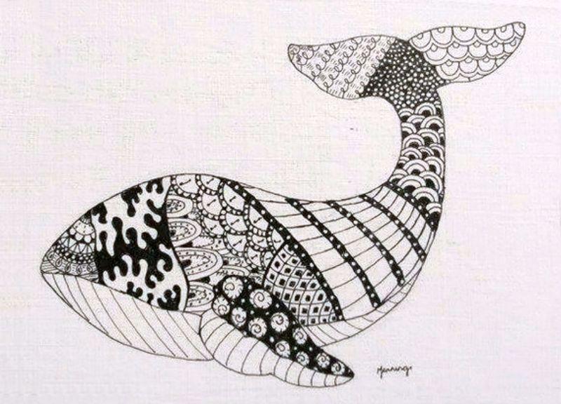 Whale zendoodle