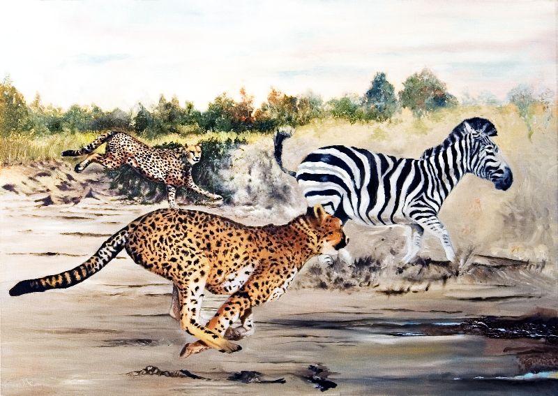 Cheetah Alley