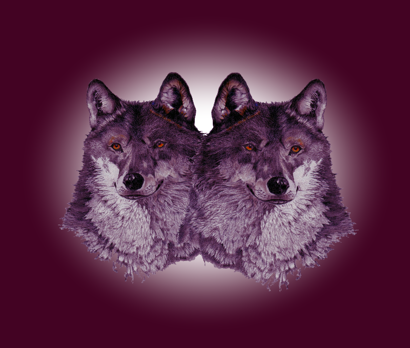 wolves in magenta