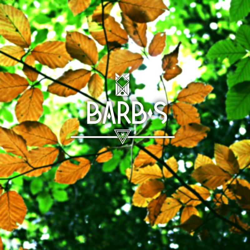 Barbs