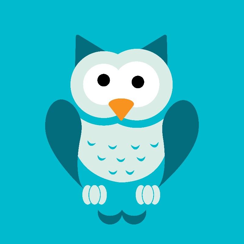 Socrates the Owl