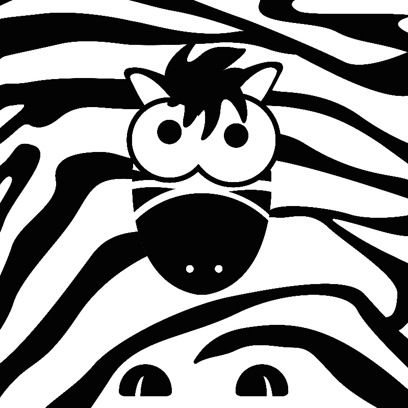 Zippy the Zebra