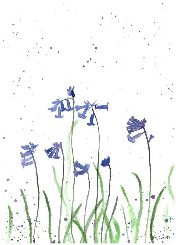 Bluebells watercolour