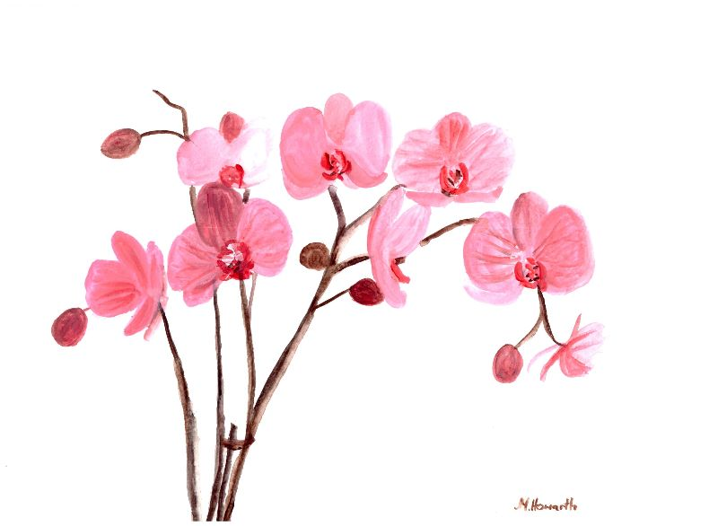 Pink orchids painting