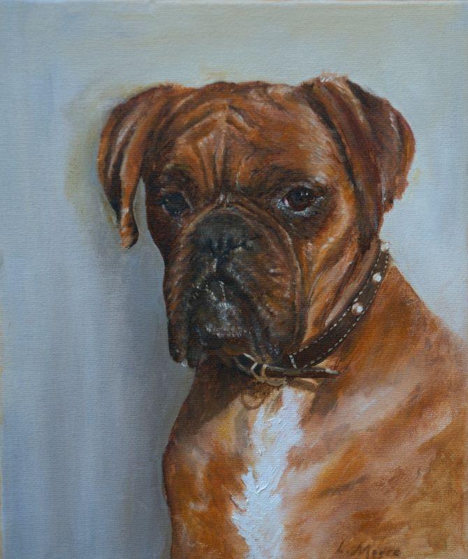 Best Friend Boxer Dog