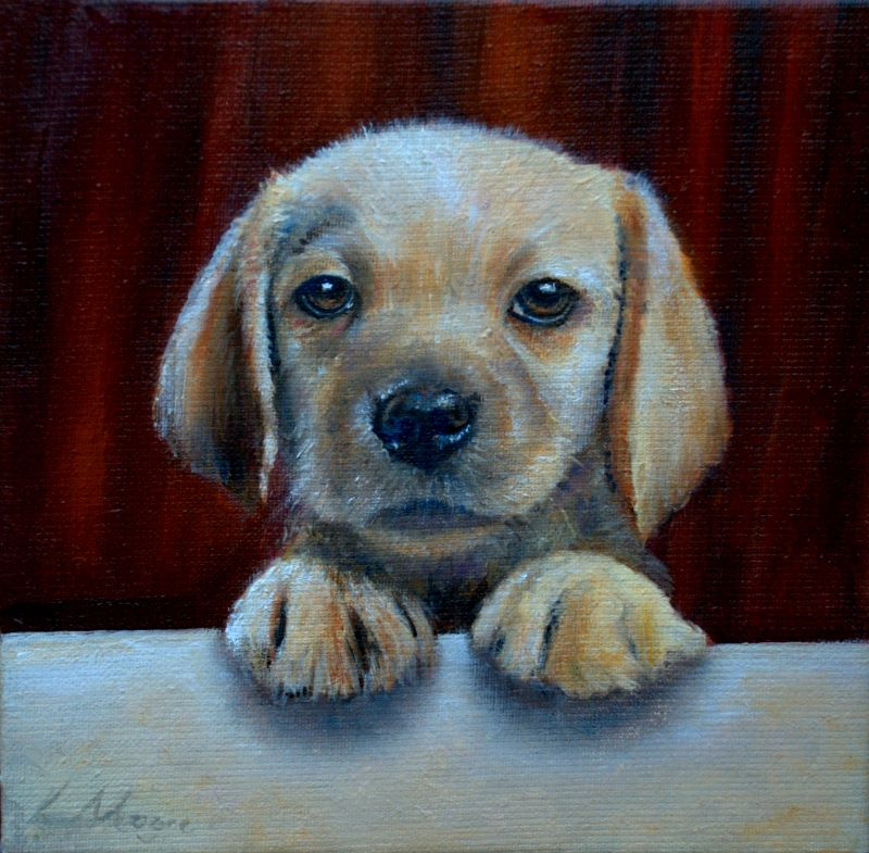 Ready Labrador puppy Art